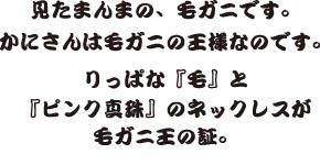 かにさん説明文.jpg